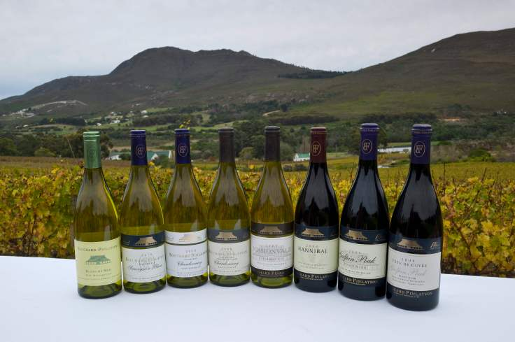 Bouchard Finlayson - bottle shot whites and reds